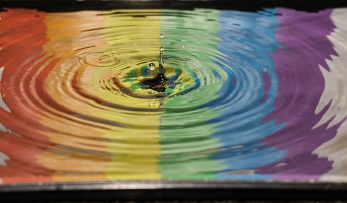 L'Observatori Contra l'Homofòbia ha registrat més de 400 incidències per LGTBI-fòbia des del 2014.