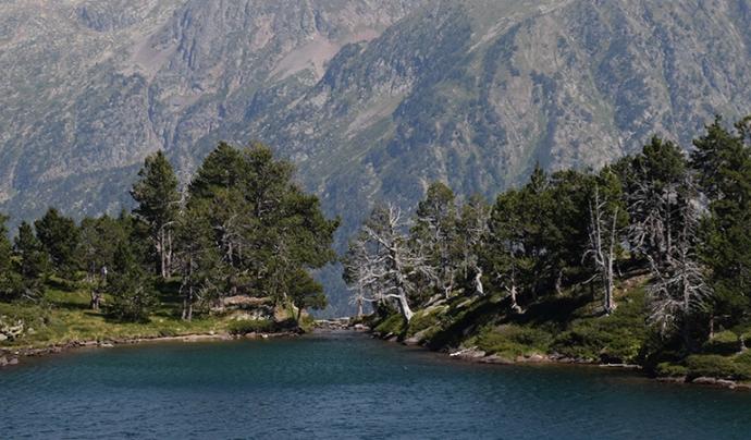Un llac enmig de les muntayes
