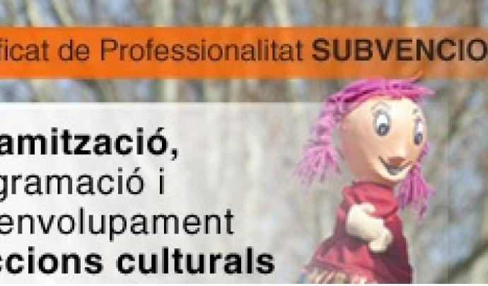 Banner curs de Dinamització d'Accions Culturals