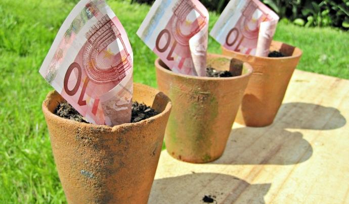 Diners en forma de plantes