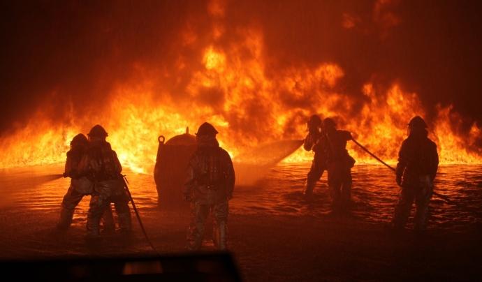 Les conseqüències que tindran els incendis per la flora i la fauna autòctona poden ser irreversibles. Font: CC