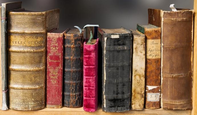 Fes una ullada a l'estanteria, de ben segur trobes algun tresor literari. Font: CC