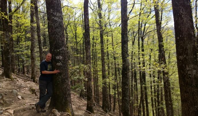 A l'actualitat hi ha una xarxa pilot de 10 boscos amb finalitat terapèutica i de cara al 2021 es pretén que s'operi en més de 20 boscos. Font: Jaume Hidalgo. Font: Font: Jaume Hidalgo.