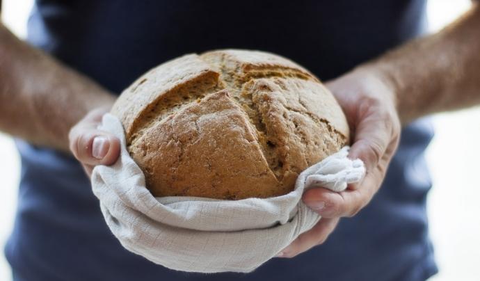 L'informe promou el dret universal a una alimentació adequada i el reaprofitament alimentari a partir de 9 eixos bàsics. Font: Unsplash. Font: Font: Unsplash.