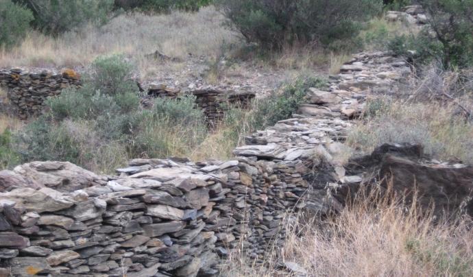 La urbanització i edificació a Cadaqués implicaria l'afectació de centenars de parets seques. Font: Amics de la Natura de Cadaqués. Font: Font: Amics de la Natura de Cadaqués.