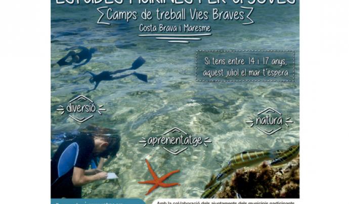 Els camps de treball Vies Braves estan dedicats a les ciències del mar