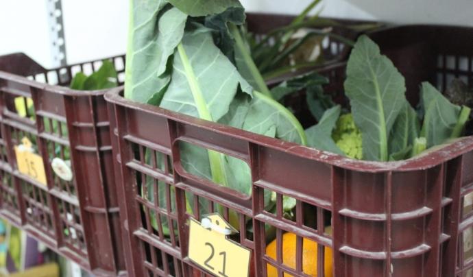 Cistelles amb productes ecològics i de proximitat. Foto: Eneida Iturbe