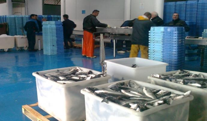 Les confraries de pesca vetllen pels interessos dels professionals del sector i duen a terme també tasques de caire social. Font: Confraria de Pescadors de Roses