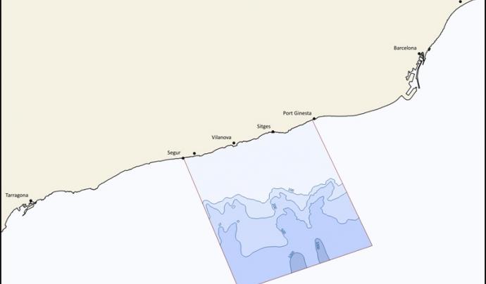 L'àrea d'estudi, que va del Baix Penedès, al Garraf, al Baix Llobregat, és una zona on s'han enregistrat nombrosos albiraments (imatge: associaciocetacia.org)