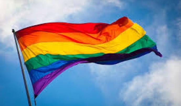 La bandera LGTBI Font: VIX