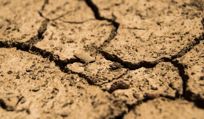 La temporada de sequeres que pateixen els països més pobres s'allarga per la dificultat de cultivar aliments durant les pluges. Font: Llicència CC