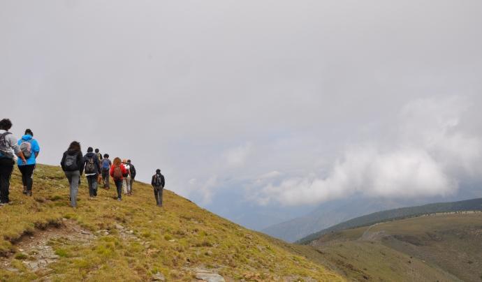 Camí de tornada per descansar i recuperar forces / Font: Projecte Boscos de Muntanya