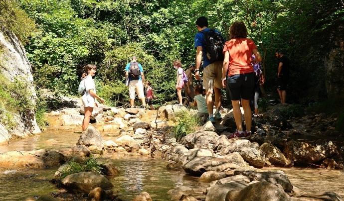 El Parc és un ecosistema dinàmic on interactuen espècies que poden estar en perill per l'afluència humana Font: GNDB