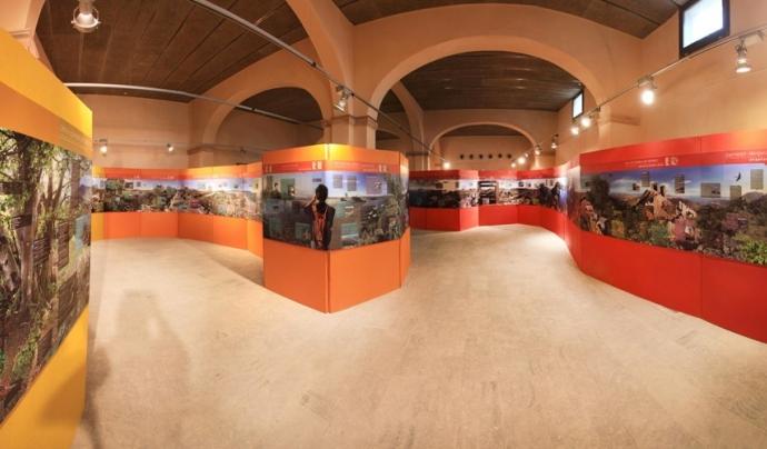 Visites a l'espai Empordana't durant el Festival de les Aus (imatge: Ecomuseu Farinera)