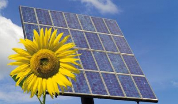 Plaques solars. Font: Jumanji Solar (flickr.com)