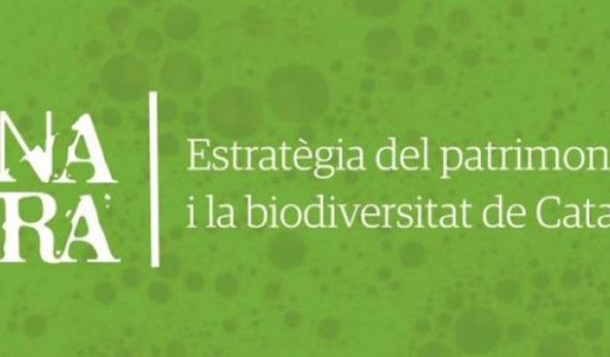 L'Estratègia respon a una necessitat per fer front  a la pèrdua de biodiversitat, i, alhora, a un mandat internacional (imatge: gencat.cat)