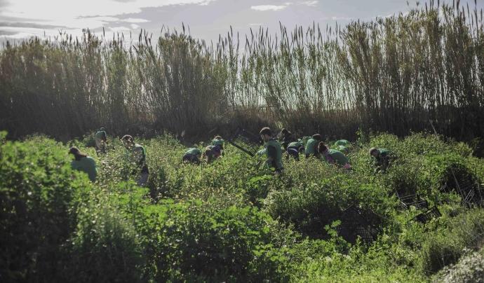 Espigoladors desitja un món més just i sostenible lluitant contra el malbaratament alimentari. Font: Rafael Coelho. Font: Font: Rafael Coelho.