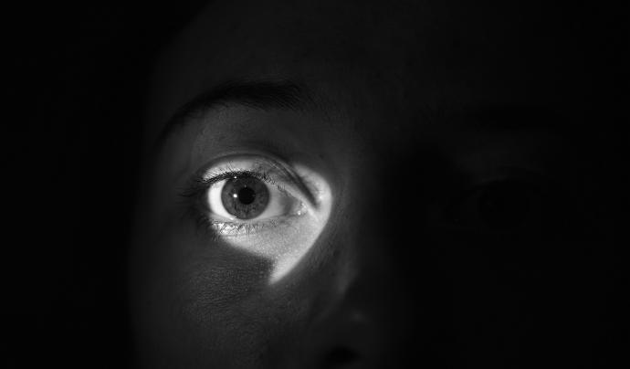 Un ull que observa. Font: Annabel_P (Pixabay)