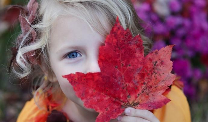 La Fibrosi Quística és una malaltia genètica i hereditària, que es transmet conjuntament sense saber-ho, pel pare i la mare. Font: Unsplash. Font: Font: Unsplash.
