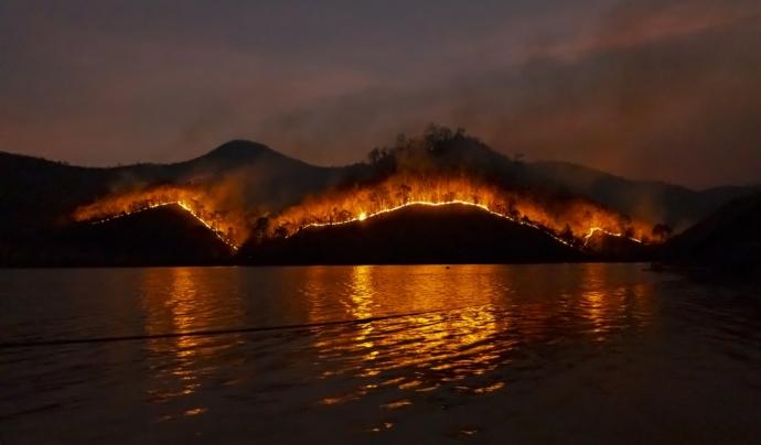 Els focs ja han arrassat amb 10 milions d'hectàrees, sent Nova Gales del Sur una de les zones més afectades. Font: Unsplash. Font: Font: Unsplash.