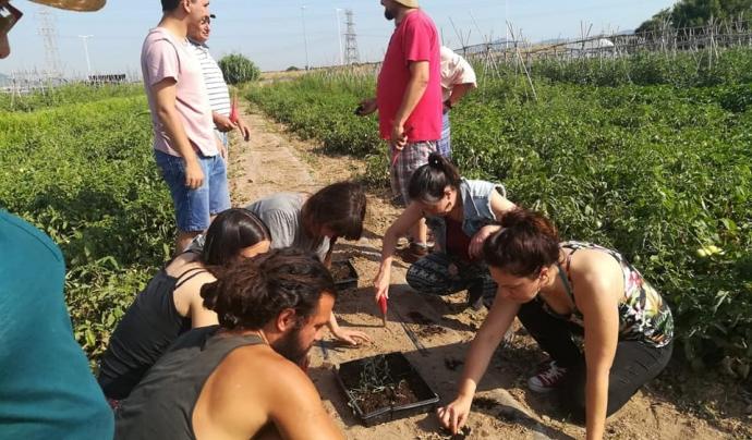 Un grup de persones treballant en un hort