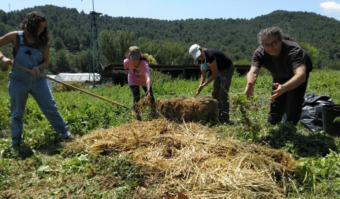 L'entitat proposa anualment un programa de cursos sobre agricultura ecològica, energies renovables, bioconstrucció i autosuficiència en general. Font: Associació l'Era