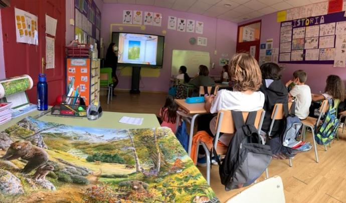 Imatge del projecte d'educació ambiental 'L'ós bru, tresor del Pirineu'. Font: Depana