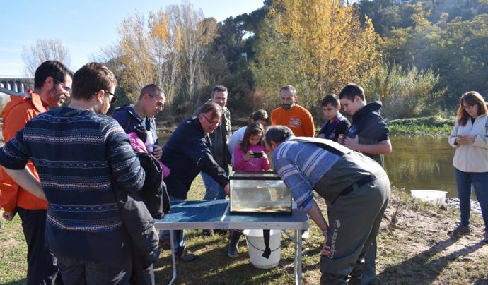 Activitat a la zona de l'aiguabarreig del Congost i el Mogent, a Montmeló, amb investigadors de l'Observatori Rivus. Font: Fundació Rivus