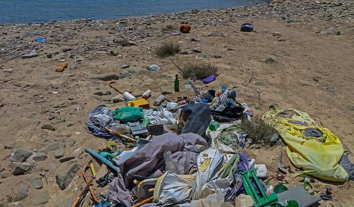 El temporal ha expulsat la brossa que hi havia al mar a la sorra de les platges. Font: CC