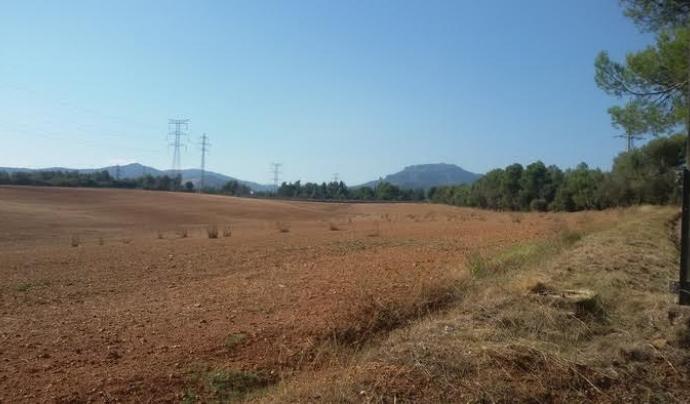 El sector forma part de 5 municipis i representa una zona d' espai naturals oberts del Vallès (imatge: wikilok/jomateixa)