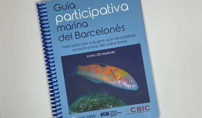 Anèl·lides publica un recull d'imatges i dades sobre la fauna i flora marines de la costa de Barcelona, Sant Adrià del Besòs i Badalona.  Font: Anèl·lides