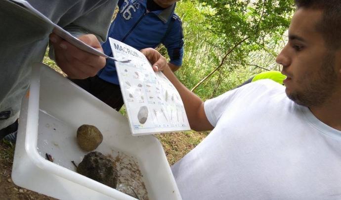 El grup de voluntariat de l'Escola de Capacitació Agrària d'Amposta al riu Sénia (imatge: Associació Hàbitats)