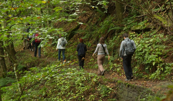Trekking als boscos casentinesos, a l'Apení de l'Emilia Romagna (imatge:  Parco Foreste Casentinesi)