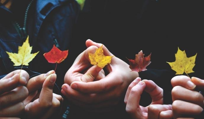 La importància de la participació interna a les entitats. Font: Xarxanet