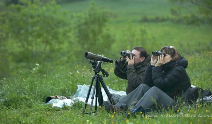 Els voluntaris i les voluntàries de Depana col·laboren desinteressadament en el seguiment i vigilància de l'espècie. Les informacions obtingudes es transmeten a les administracions públiques competents. (imatge: Oriol Alemany)