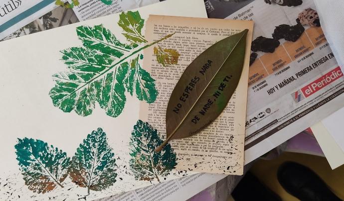 El projecte desperta les emocions i la creativitat artístiques a través de la descoberta de l'entorn natural. Font: Desperta! Art i Natura