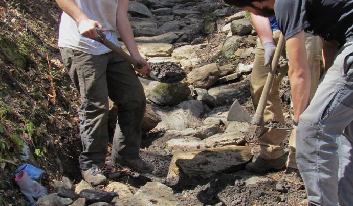 Al llarg de la setmana es desenvolupen diferents tasques / Font: Projecte Boscos de Muntanya