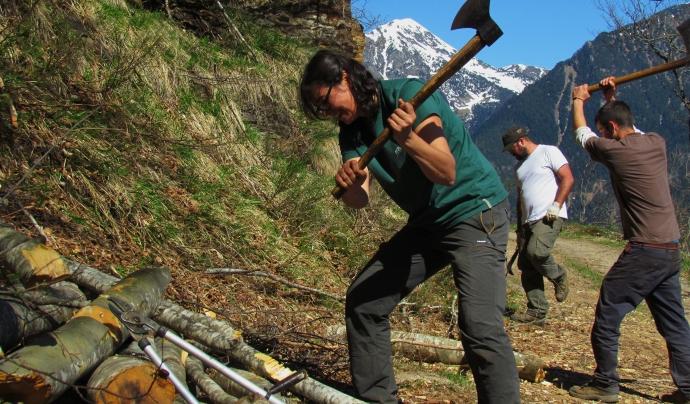 Els voluntaris tenen l'acompanyament de persones formades en tasques específiques /  Font: Projecte Boscos de Muntanya