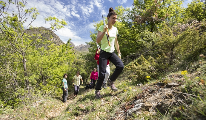 L'entitat duu a terme diversos projectes de voluntariat ambiental. Font: Projectes Boscos de Muntanya