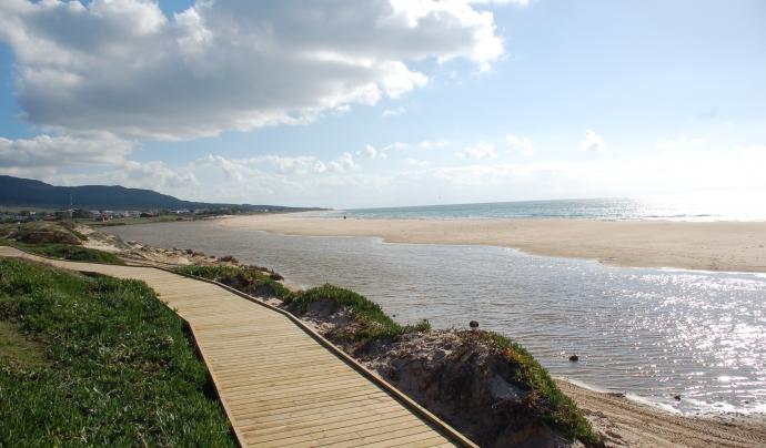 Passeig costat del mar