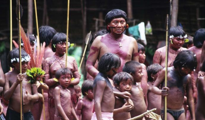 Poblat indígena dels 'Yanomamis'.  Font: Survival International.