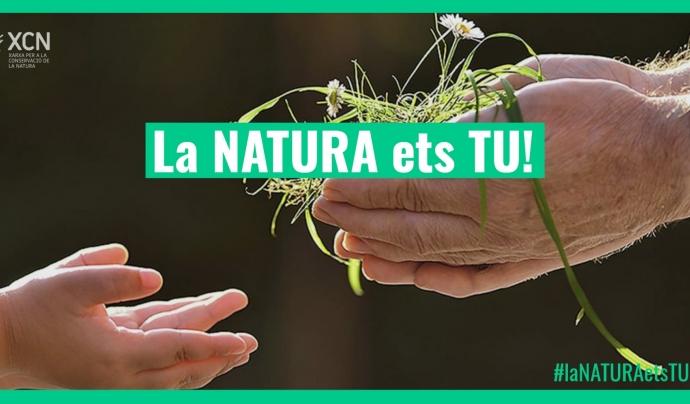 La XCN anima a la ciutadania a expressar-se a les xarxes socials a favor de les polítiques ambientals sota el hashtag #CATecosocial i #laNaturaetsTU. Font: Llicència CC