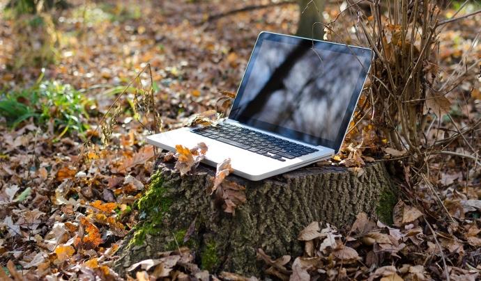 Un ordinador portàtil a la natura Font: Goumbik (Pixabay)