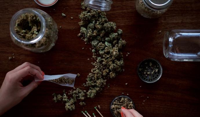 Cabdells de marihuana.