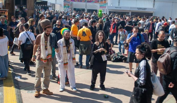 Damian Marley va oferir un concert i va reivindicar 'la necessitat de regular el cànnabis i la seva indústria Font: Josep V. Marín