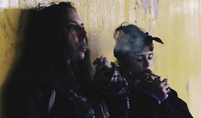 La majoria dels joves atesos per l'entitat Projecte Home, eren consumidors de cànnabis Font: Font: Unsplash