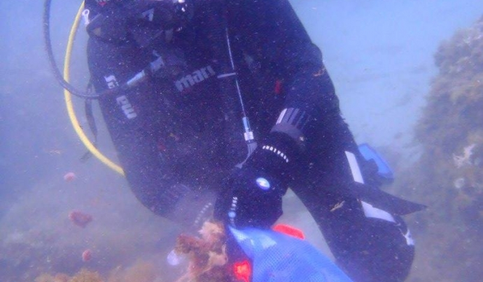 La pràctica del submarinisme és una bona ocasió per fer observacions. A la imatge, extracció de residus del fons del mar. (imatge:  Quim Abadia Mesalles)