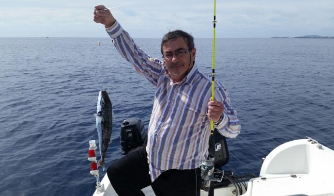 Peix globus detectat i informat a Observadores del Mar (imatge: observadores del mar)