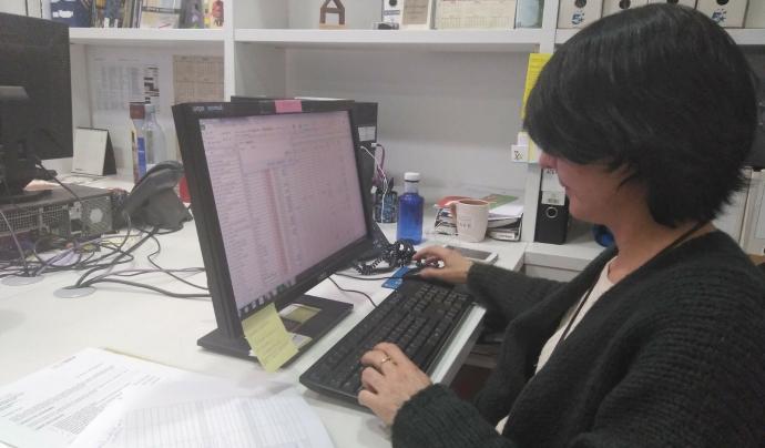 Dona consultant Internet