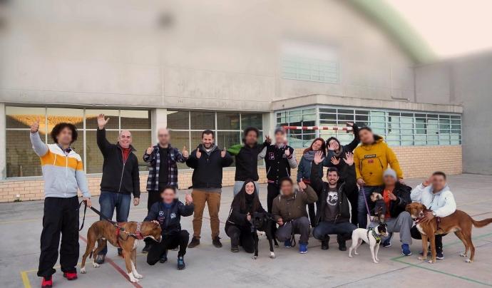 El projecte Obrint Portes ja porta més de 48 edicions, amb 92 gossos adoptats. Font: Alperroverde
